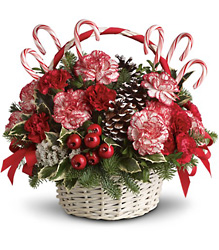 Candy Cane Christmas from Faught's Flowers & Gifts, florist in Jonesboro