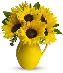 Sunny Day Pitcher Sunflowers from Faught's Flowers & Gifts, florist in Jonesboro