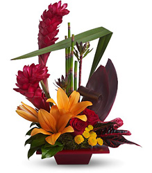 Tropical Bliss from Faught's Flowers & Gifts, florist in Jonesboro