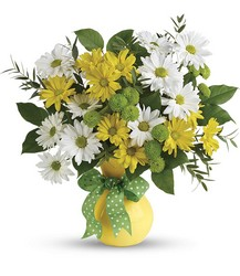 Teleflora's Daisies And Dots Bouquet from Faught's Flowers & Gifts, florist in Jonesboro