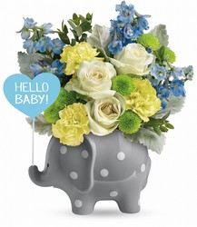 Hello Sweet Baby from Faught's Flowers & Gifts, florist in Jonesboro